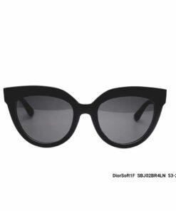 DIOR DiorSoft1F SBJ02BR4LN 53 -21 145
